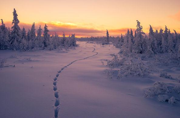 Новый сезон «Игры престолов» предложено снимать в Якутии