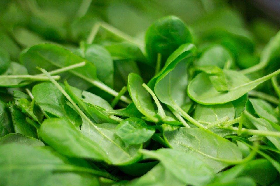Ученые: шпинат защищает от депрессии и не позволяет организму набирать вес