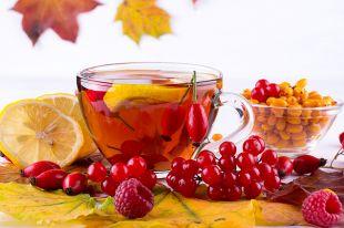 Лечимся ягодами. Что можно собрать поздней осенью?
