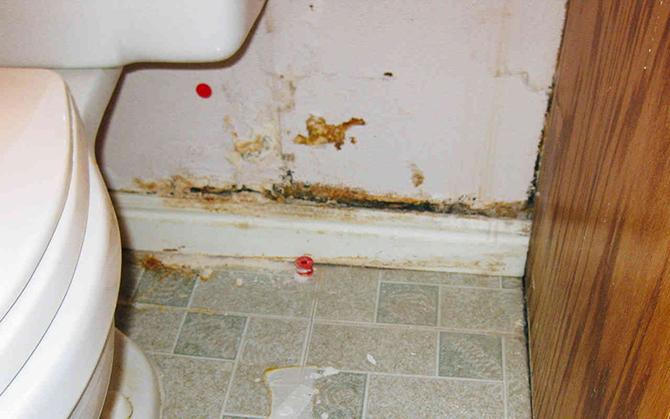 Самые грязные места вашего дома