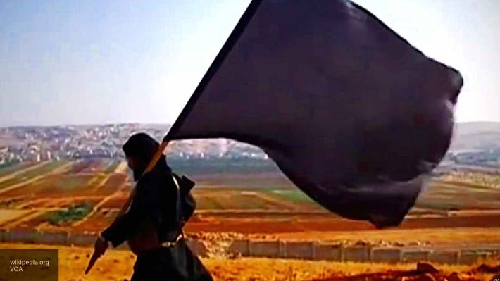 Боевики ИГИЛ объявили о созд…