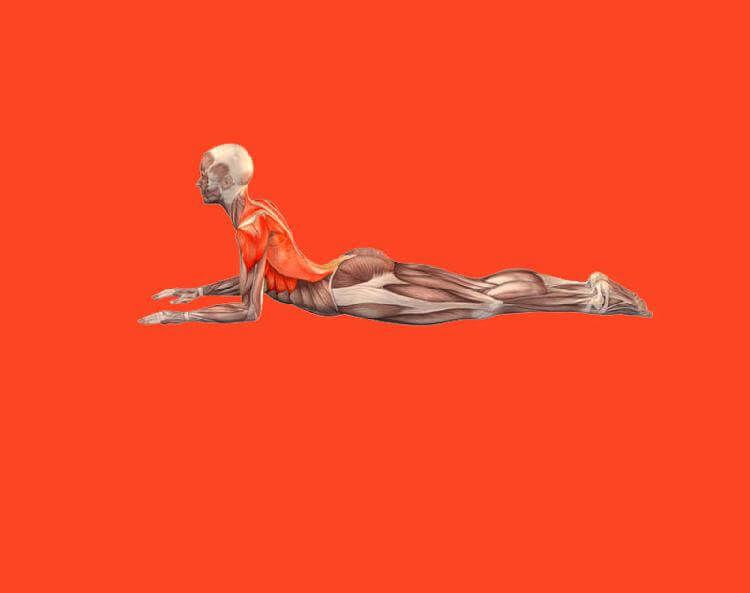Гениальная гимнастика для ленивых.