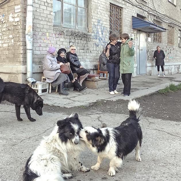 Голодец назвала бедность россиян основным препятствием для роста экономики РФ