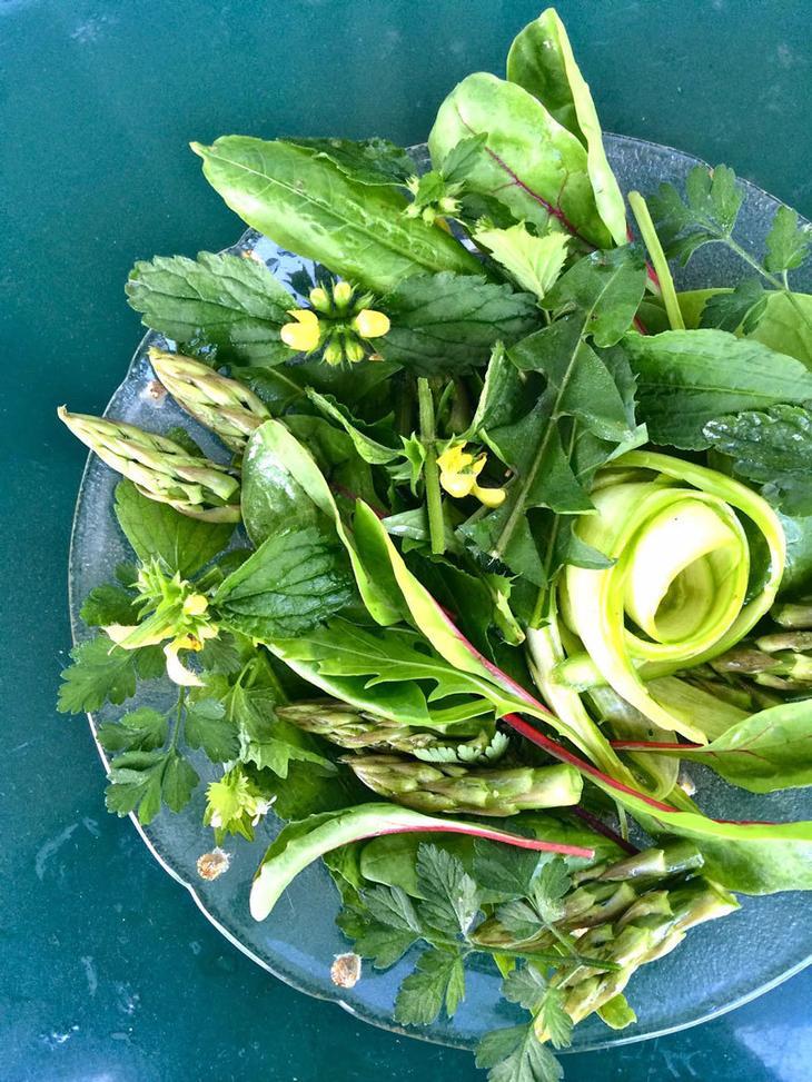 Съедобные сорняки—кладезь витаминов!