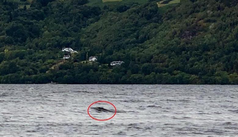 Турист заснял в озере Лох-Не…