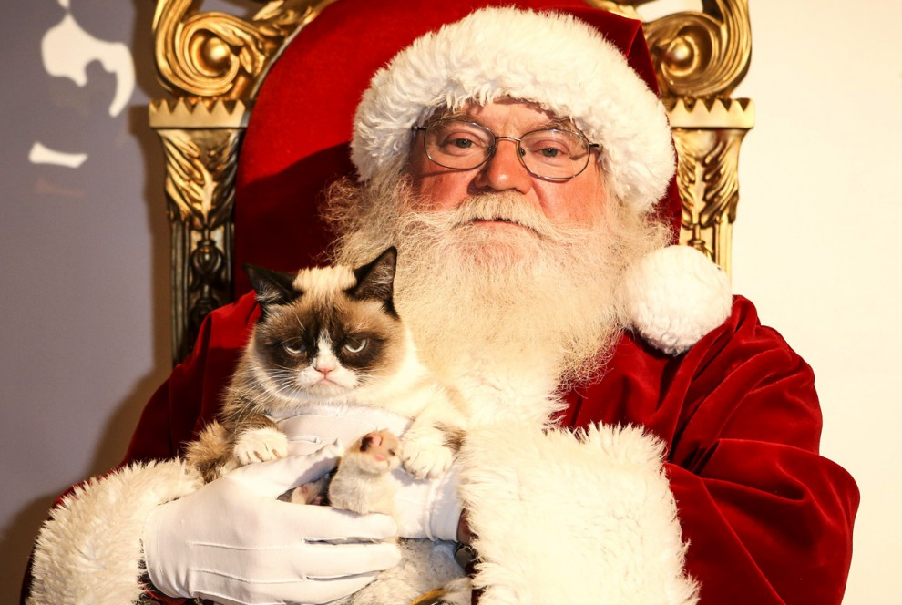 Мир накануне Рождества