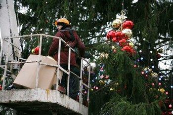 Демонтаж новогодних елей завершился в столице