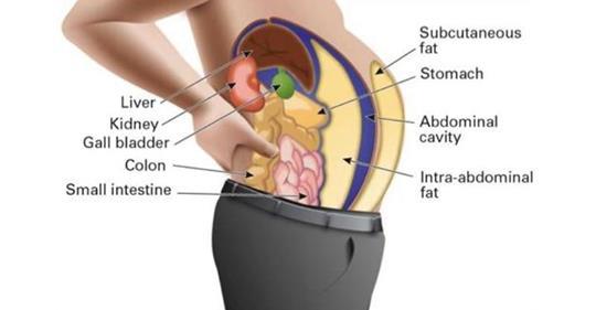 Токсины в жировых клетках вызывают болезни и вздутие! Вот как вы можете их очистить!