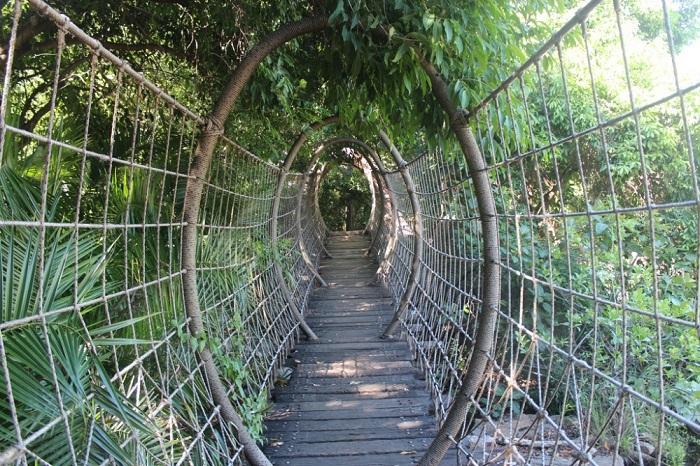 Удивительно оригинальный и красивый мост.