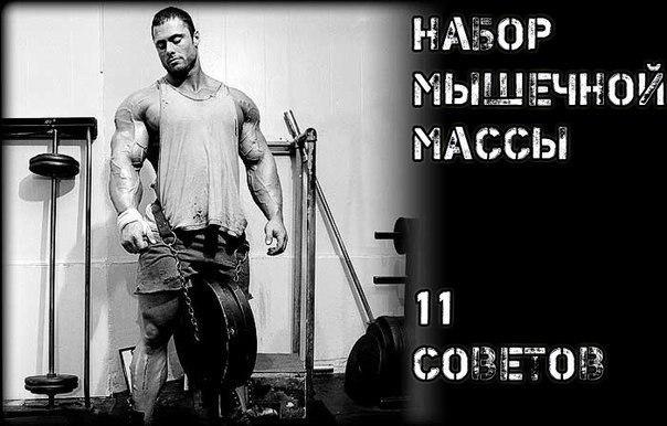 Набор мышечной массы. 11 практических советов