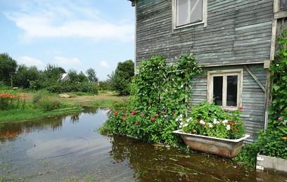 Почти 200 дачных участков Хабаровском крае подтоплены из-за паводка