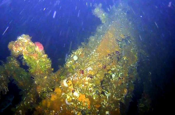 На Аляске нашли останки корабля периода Второй мировой войны