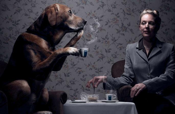 Как избежать неприятного разговора