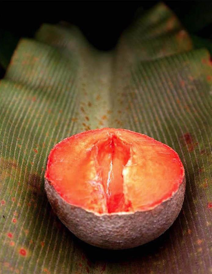 355 Экзотические фрукты