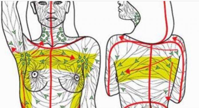 Сделайте эту технику перед сном, чтобы очистить лимфатические железы