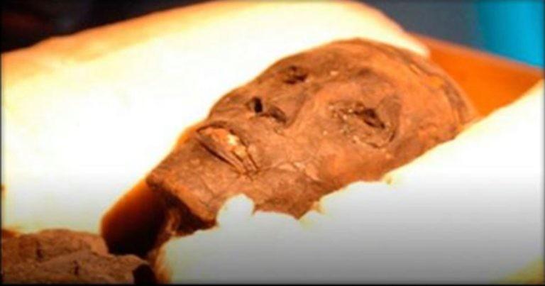 Учёные поражены: Анализ ДНК почти сотни египетских мумий показал нечто неожиданное