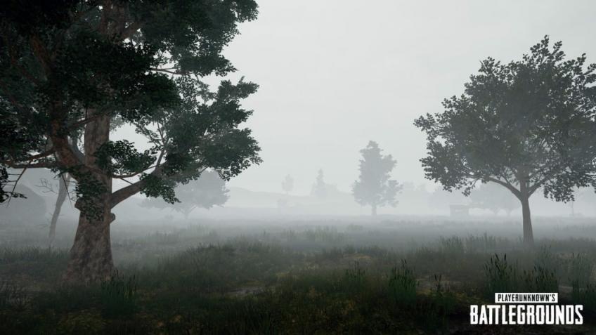 PlayerUnknown's Battlegrounds получила патч с туманом и новым городом