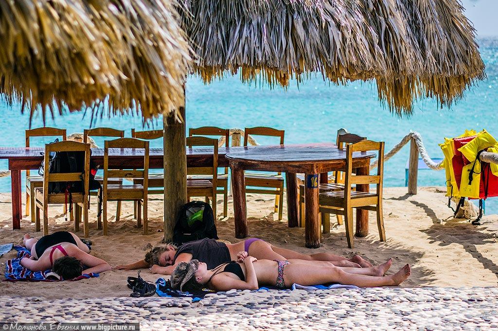 facts 26 75 фактов про Доминиканскую Республику