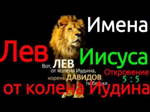 сайт или имена для мальчика льва почты праздник для