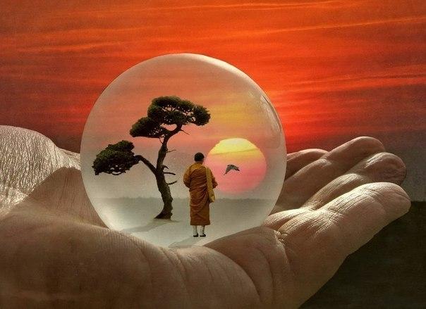 9 жизненных уроков, базирующ…