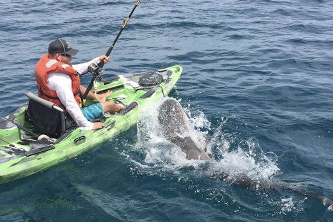 Рыбак поймал акулу и хищник чуть не утащил его на дно