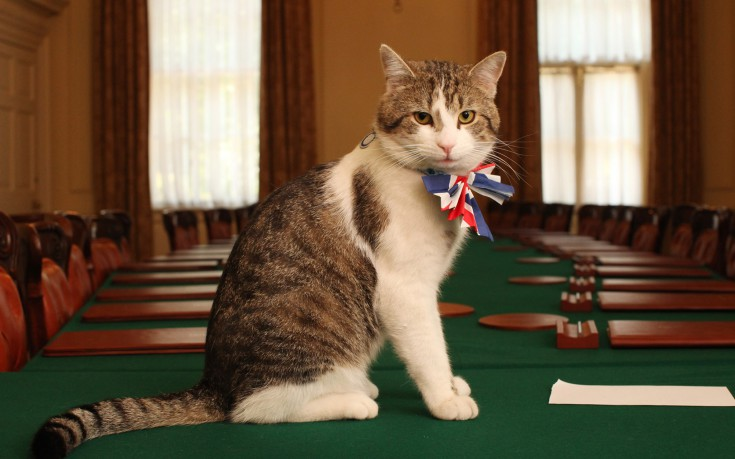 http://s.nbst.gr/files/1/2016/07/larry-the-downing-street-cat-735x459.jpg