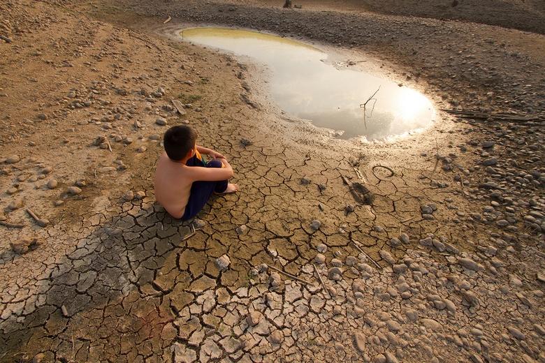 К 2030 году человечество столкнется с массовым голодом