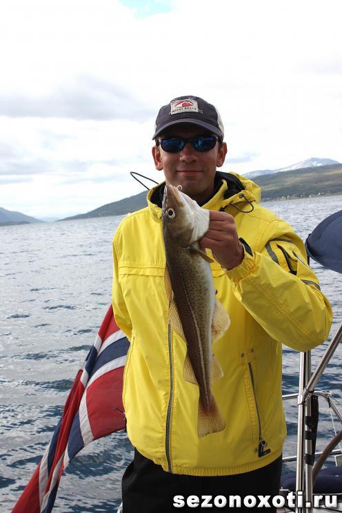 рыбалка заполярного