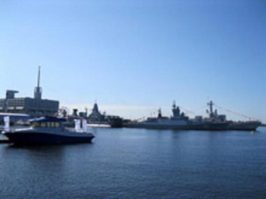 Сердюков и Васильева продали берег Финского залива. Сделка отменена