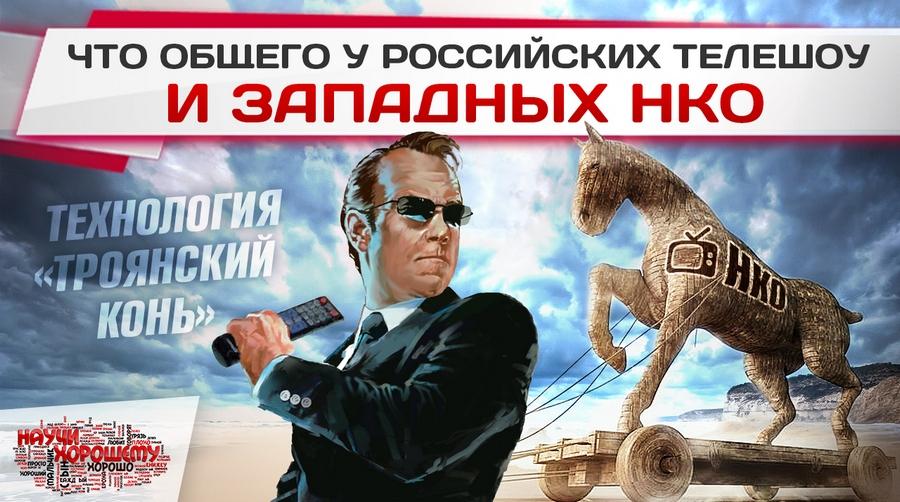 Что общего у российских телешоу и западных НКО?