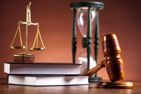 Элвин судебная практика по теме семейное право приподняла