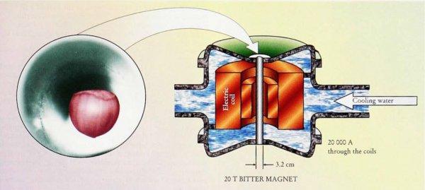 Левитация в магнитном поле своими руками 72