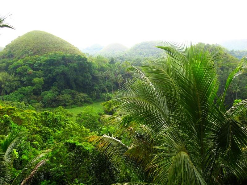 Третье место: шоколадные холмы на Филиппинах.
