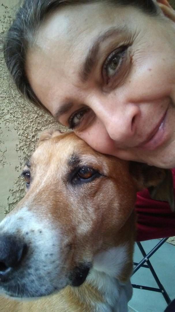 «Дайте мне самого несчастного и ненужного пса!», — попросила девочка выбор сердцем, ребенок, собака