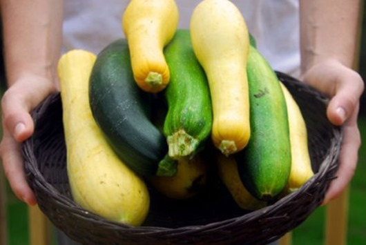 Кабачковая диета: –3 кг веса за 10 дней