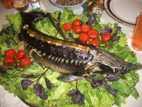Блюда из рыбы не только вкусны, но и крайне полезны