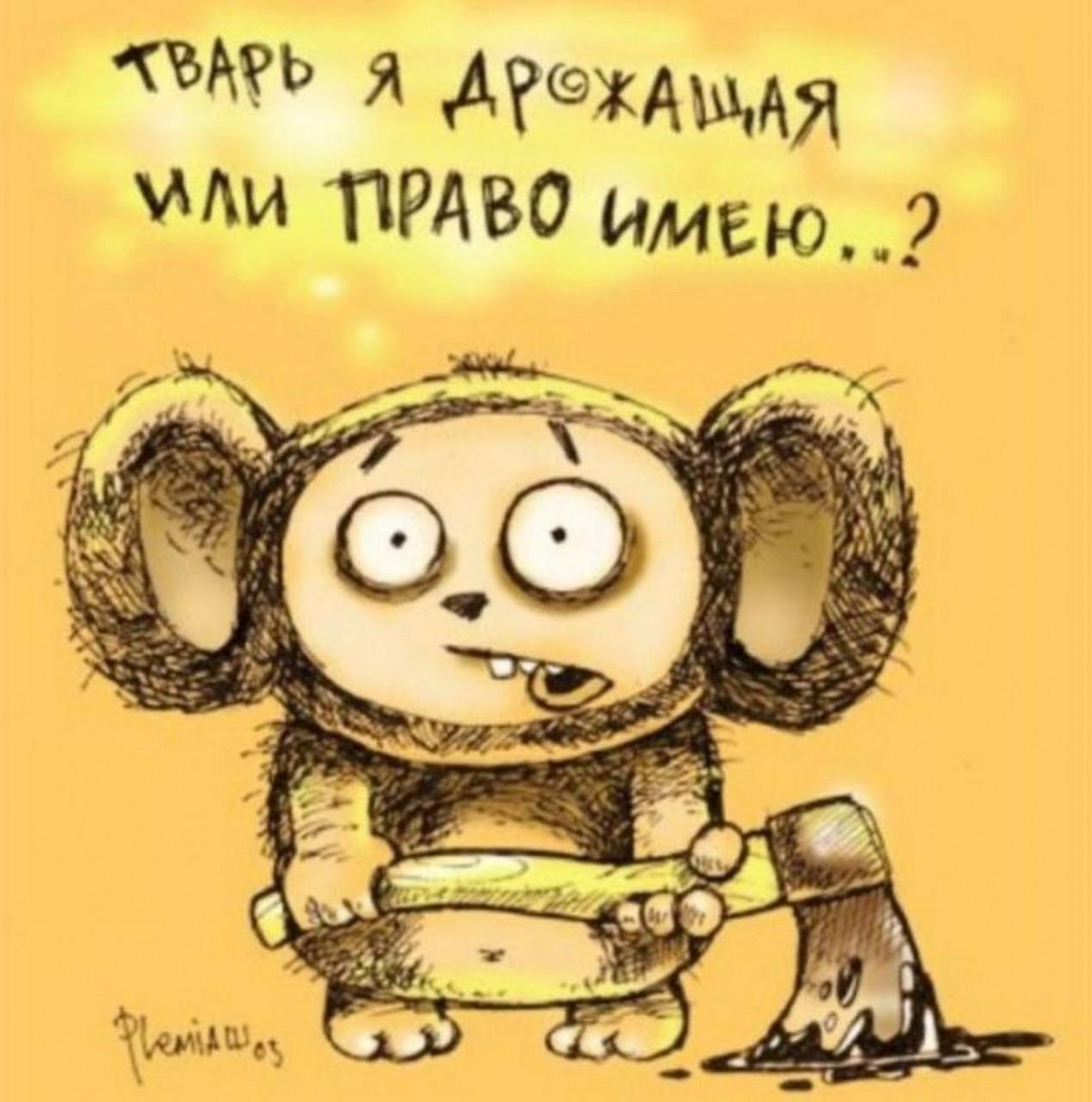 Юлия Витязева: Твари дрожащие под маской «гражданского общества»