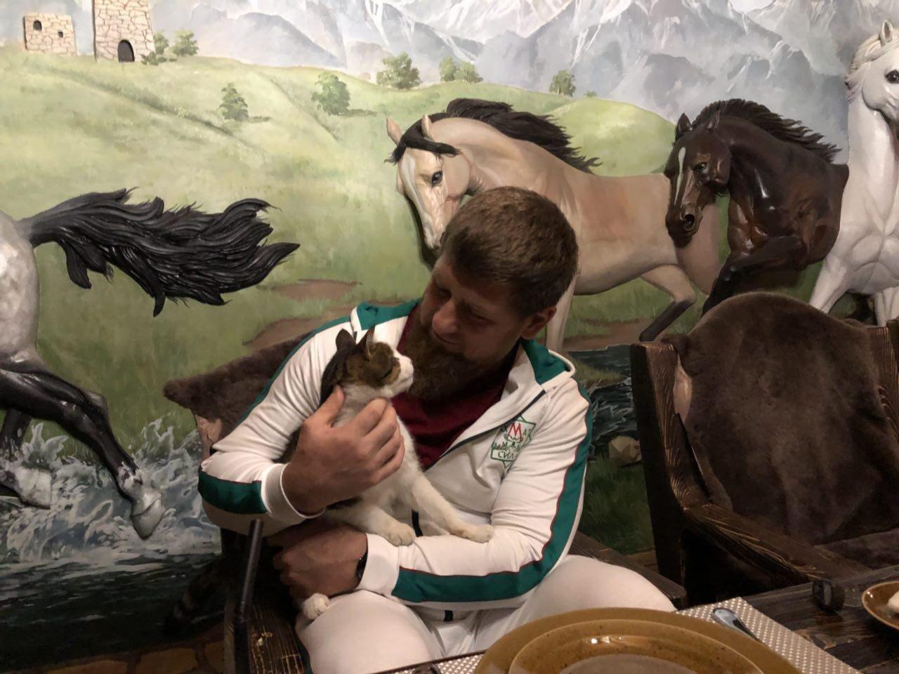 Кадыров рассказал трогательную историю о своем слепом коте в честь Международного дня кошки