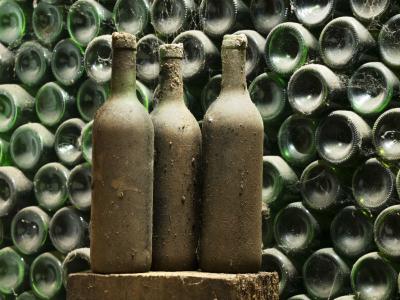 «Вино обречено»