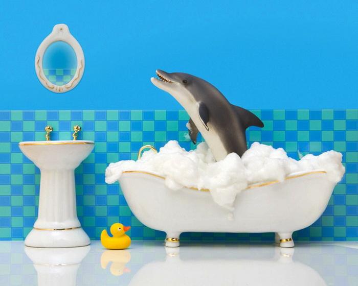 Тайная жизнь игрушек в фотопроекте Джеффа Фрисена. Дельфин-чистюля