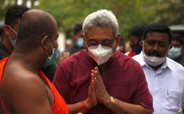 В объективе Шри-Ланка — август 2020