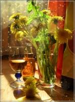 Как сделать вино из одуванчика
