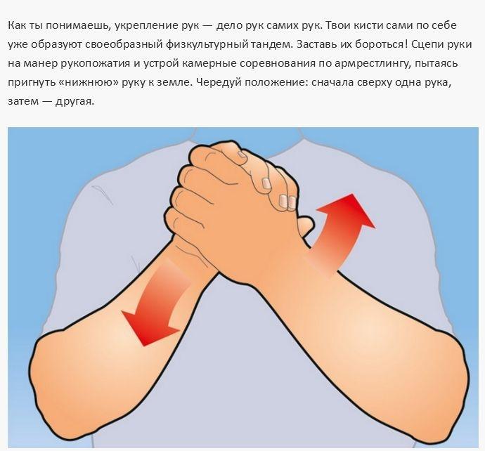 Простые упражнения для тренировки всех мышц рук