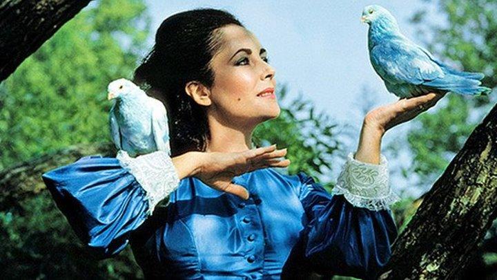 Картинки по запросу синяя птица фильм