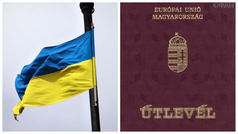 «Надо бить по зубам»: на Украине предложили дать военный ответ Венгрии на раздачу паспортов в Закарпатье