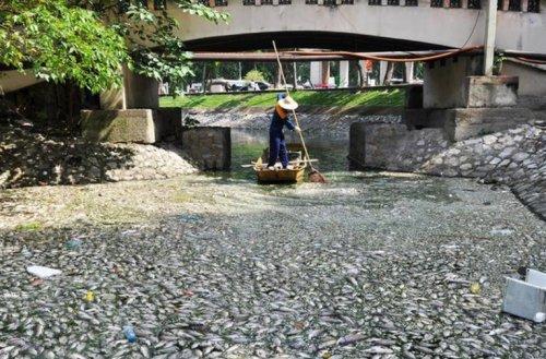 Топ-10: Озёра с необычными вещами на водной поверхности