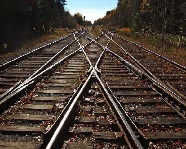 Тот скорый поезд (Ола Дмитриева)