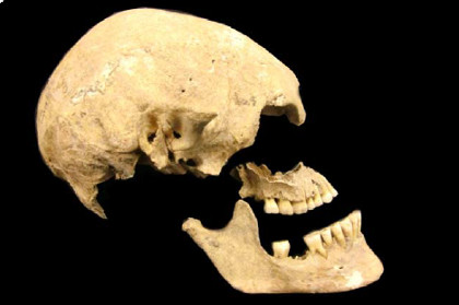 """Предков европейцев разделили на три популяции (дополнение к теме """"Загадка двух типов кроманьонцев Европы и Северной Африки"""")"""