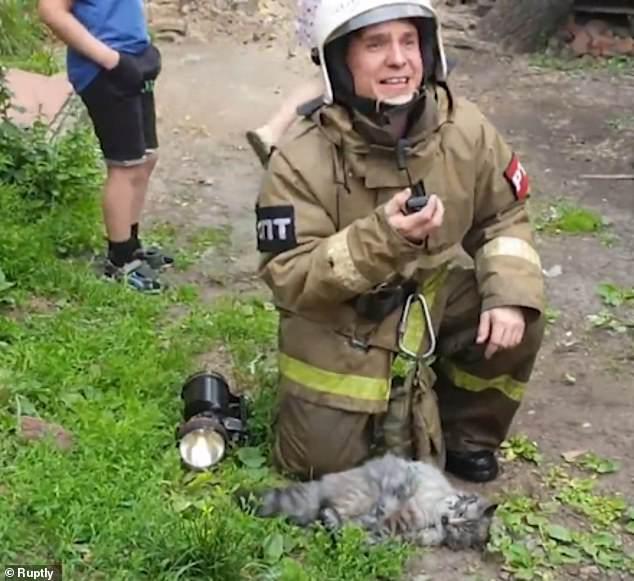 Томские пожарные не пожалели времени и сил на реанимацию кошки!