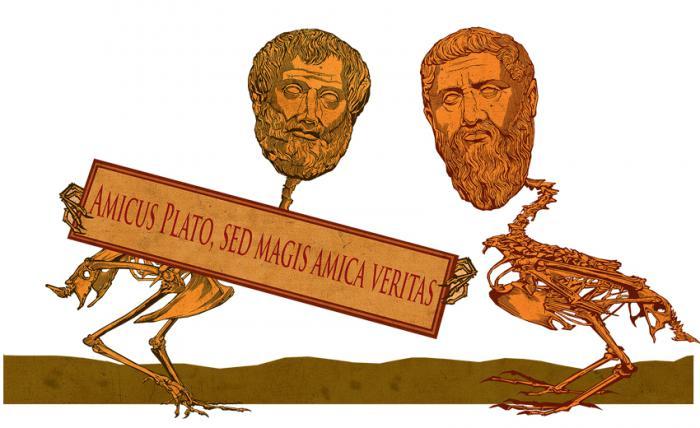 Иллюстрация: Алексей Таранин